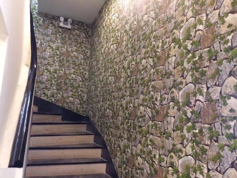 Giấy dán tường cho spa tphcm